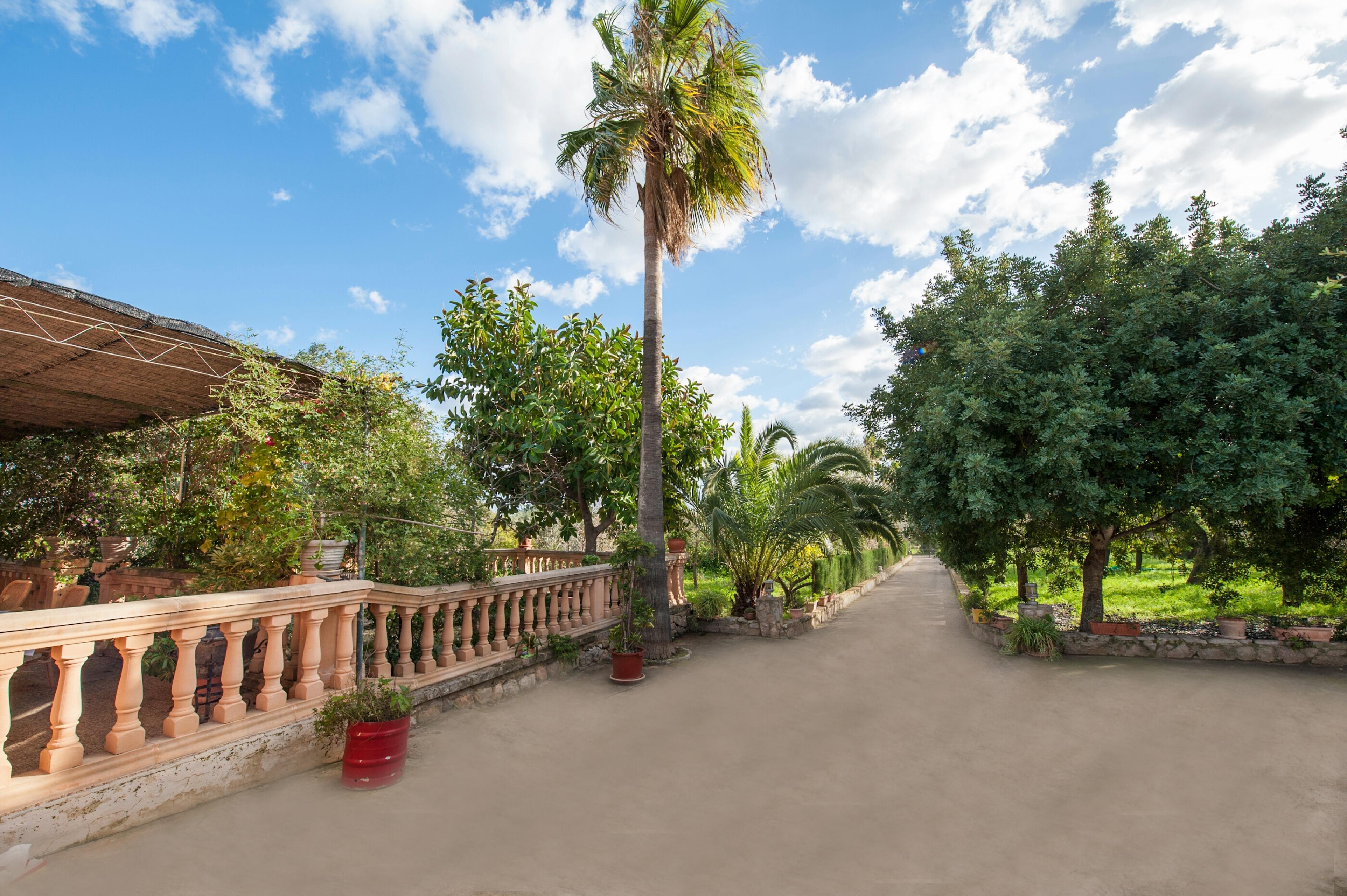 Maison de vacances CA'N LLUC- Alaró- MALLORCA - Kostenloses WLAN (2687507), Alaro, Majorque, Iles Baléares, Espagne, image 13