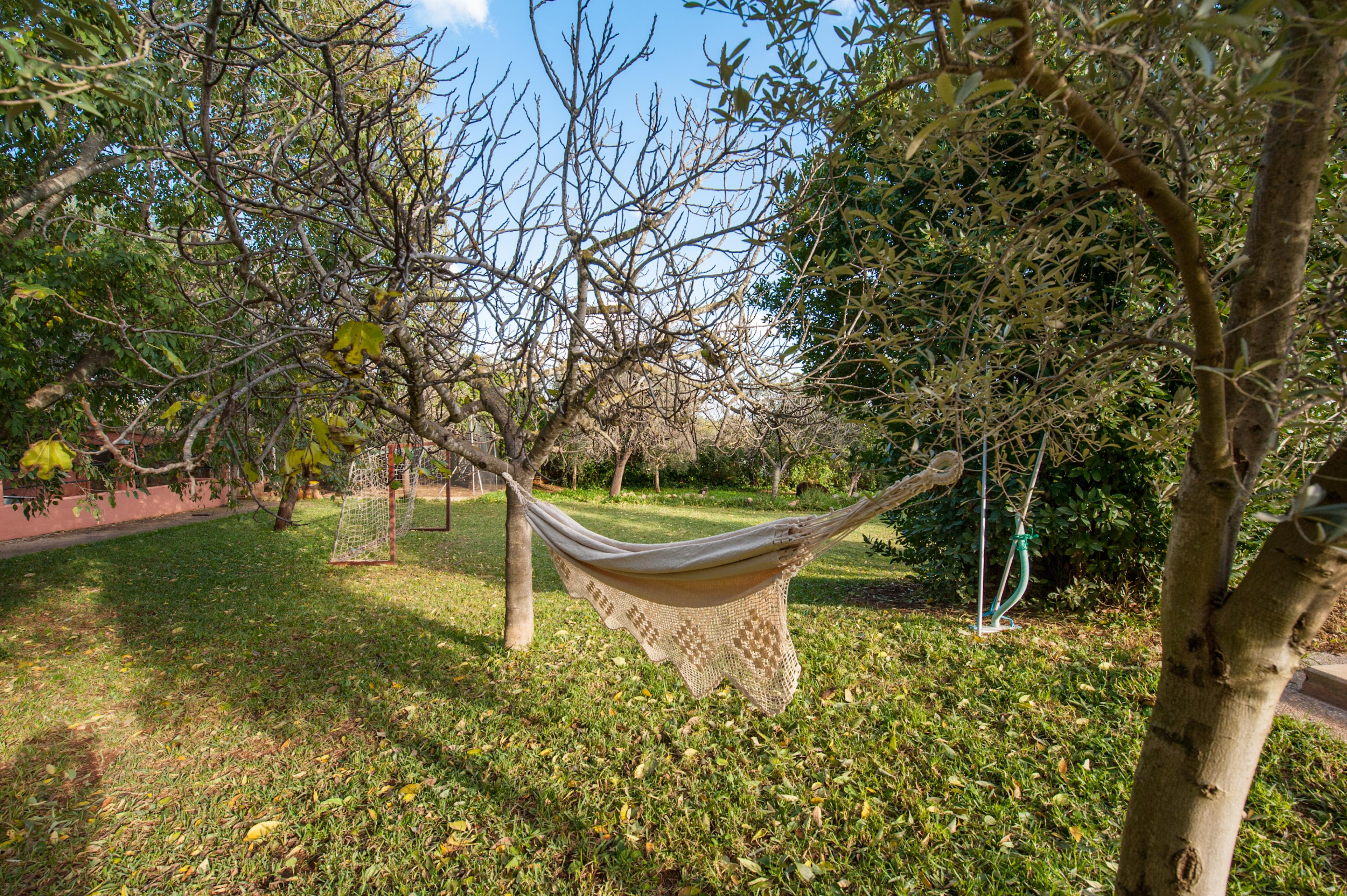 Maison de vacances CA'N LLUC- Alaró- MALLORCA - Kostenloses WLAN (2687507), Alaro, Majorque, Iles Baléares, Espagne, image 41